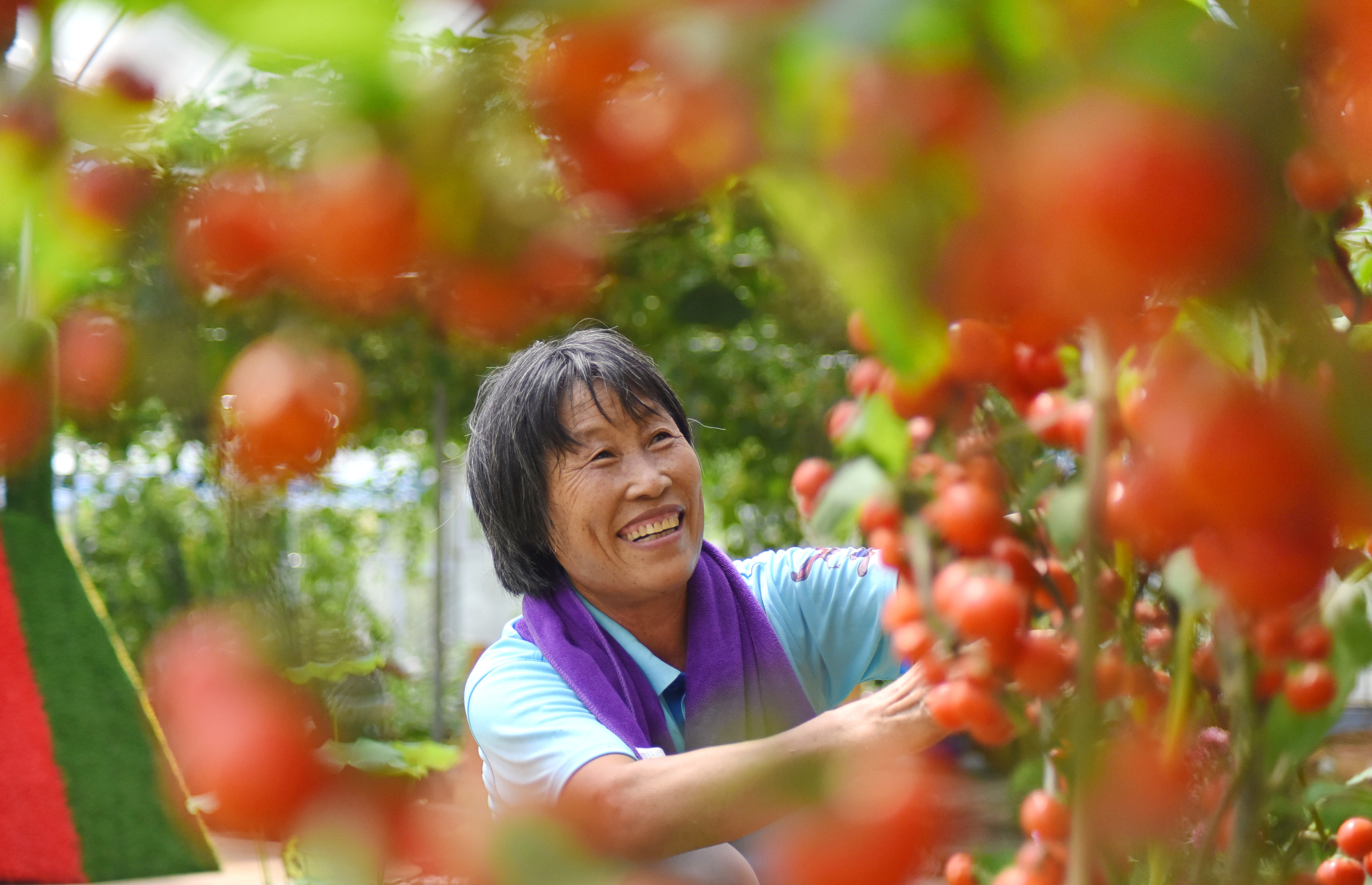 山东沂源:农旅融合助增收