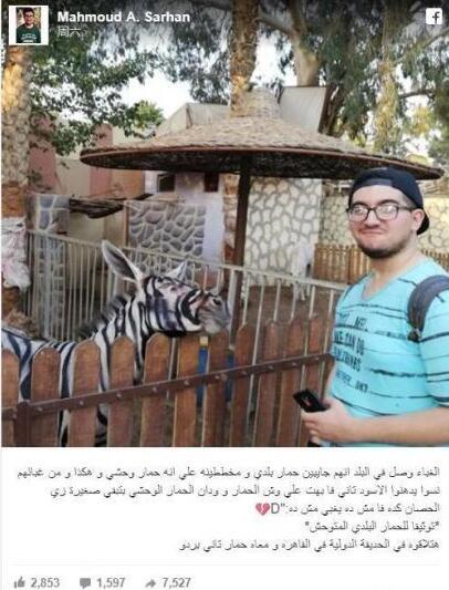 动物园画驴成斑马 驴子:这事真不能怨我