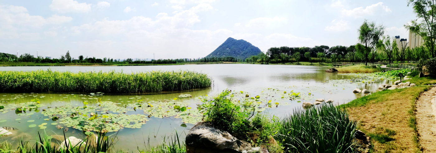 华山湿地公园全景
