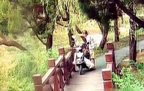 男子庆儿子考上重点大学 公园放生2条长蛇被拘