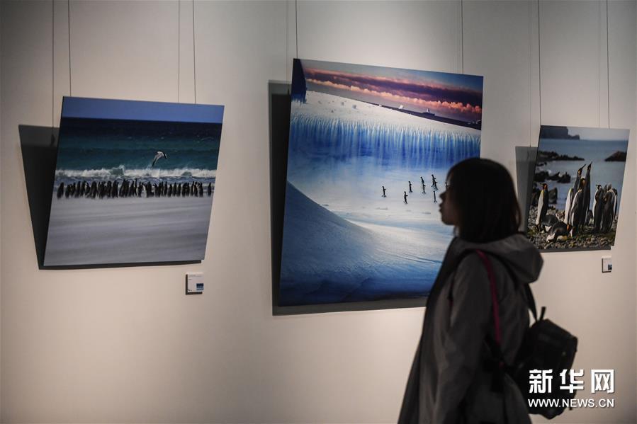 """首届""""一带一路""""国际海洋城市文化摄影周在大连开幕"""