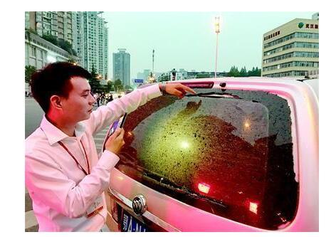 大写的心疼!高楼施工落玻璃雨 6车被砸其中有百万豪车