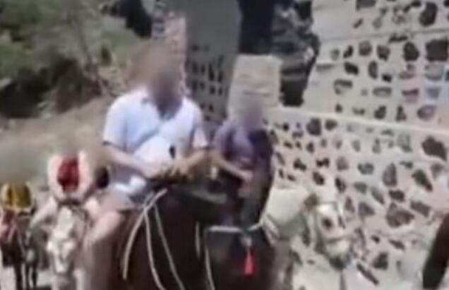 希腊:禁止肥胖游客观光骑驴 为驴的健康实施限重