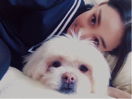 是家人啊!张馨予发文悼念爱犬 网友:他在旺星会快乐的