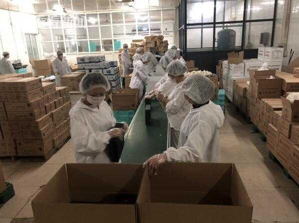 进口博览会期间牛奶棚食品加紧赶制5万份应急备餐盒