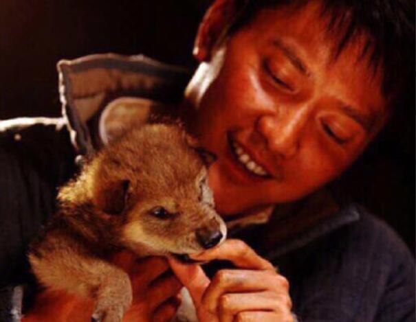 原标题:冯绍峰换头像 网友:狼崽难道意味着男孩? 值班主任:颜甲