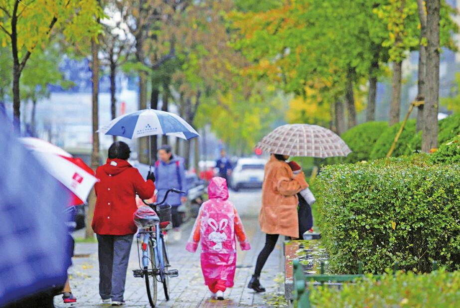 冷风催落叶冬雨润泉城