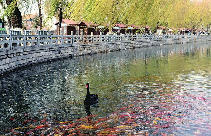 百花洲西岸湖堤重新开放