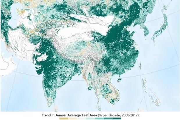 现实版蚂蚁森林?地球比20年前更绿 主要归功于中国与印度
