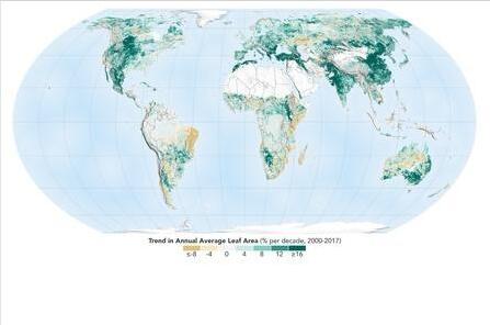 保护生态!地球比20年前更绿了 植被面积增长成绩喜人