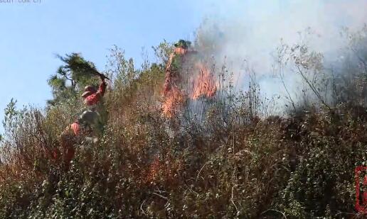 四川西昌森林火灾  269名队员集结进入火场扑救