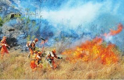 四川西昌森林火灾明火已扑灭 村民做农活焚烧杂草引发