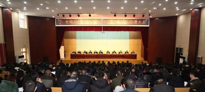 唐王镇经济社会发展总结表彰暨工作部署大会召开