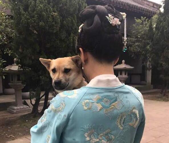 陈乔恩为爱狗庆生 本尊回应了到底说了什么?