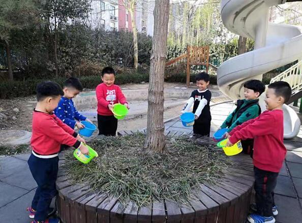 槐荫区实验幼儿园开展植树节活动