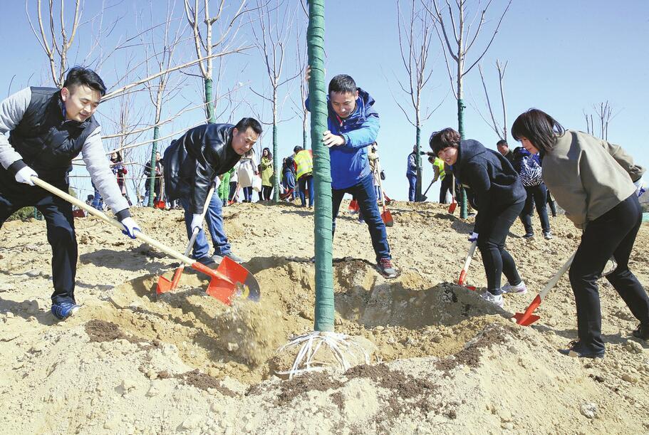 华山重装开放后首个植树节 济报集团携手城市建设集团共建读者林