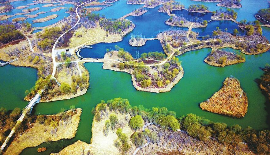 济西湿地开园倒计时