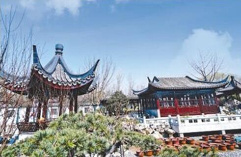 北京世园会风度