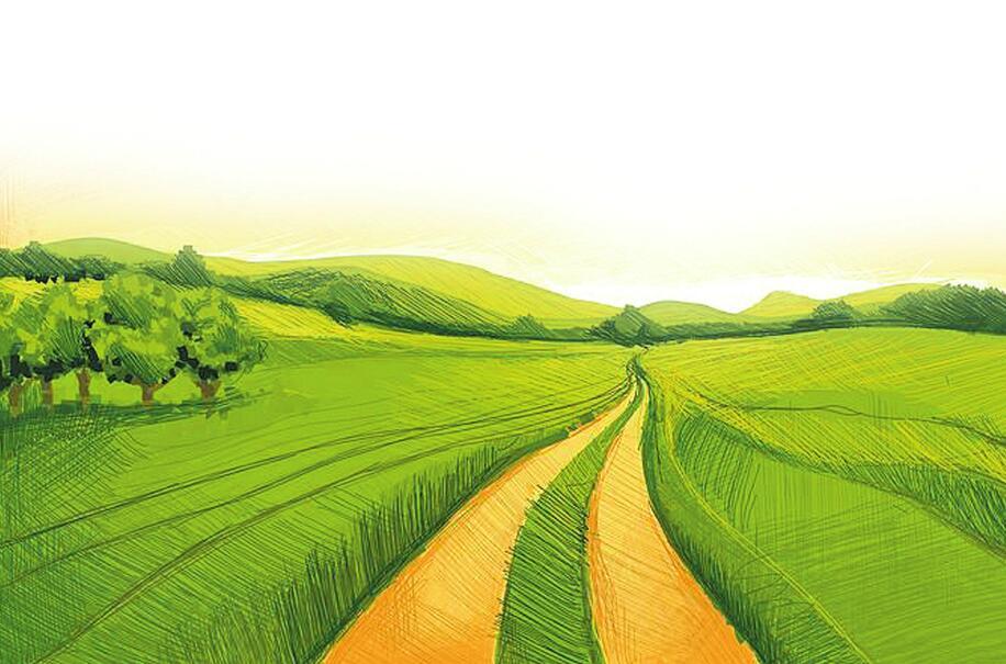 他们,奔忙在乡村振兴的田野上