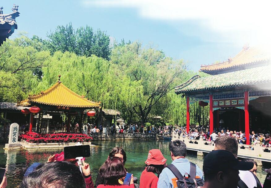 观名泉,赏百花  176万游客走进市属公园景区乐享假日