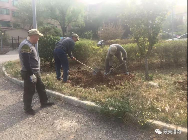 植树绿化环境,共建美好家园——景和山庄社区开展植树绿化活动
