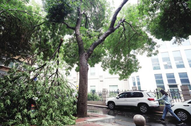 交警积极应对强降雨天气全力保障道路安全畅通