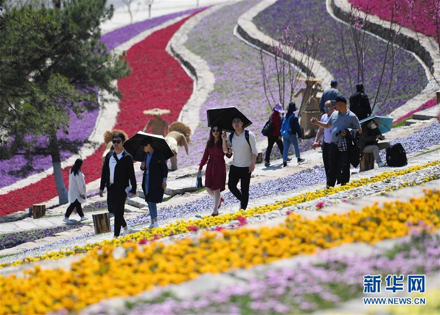 (聚焦中国经济亮点·图文互动)(1)肌体健康 韧性强劲——从二季度开局看中国经济发展