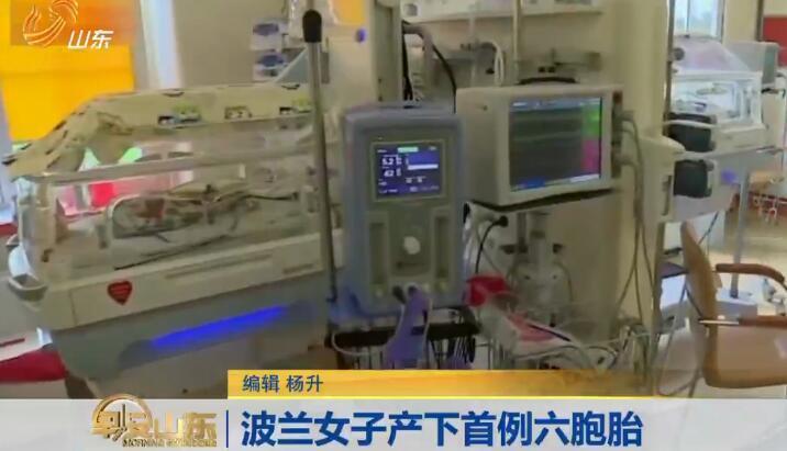波兰女子产六胞胎 每个新生儿体重约1公斤