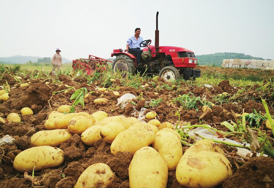 莱芜区争创全国主要农作物生产全程机械化示范区