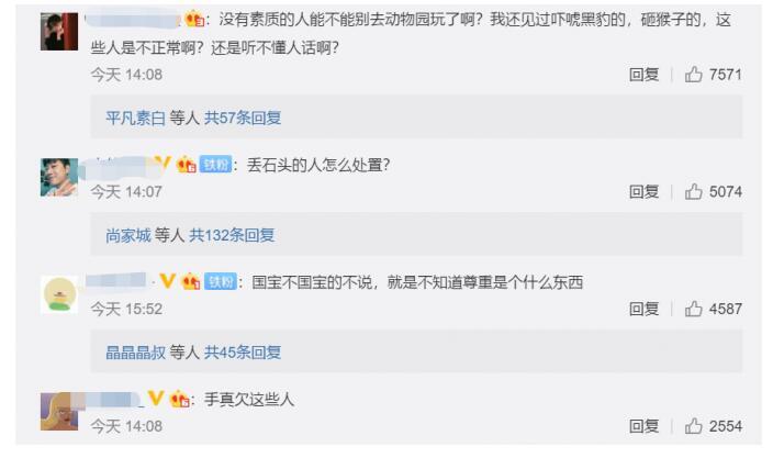 """动物园熊猫被砸 北京动物园回应:大熊猫""""萌大""""采食、排便、活动、玩耍均正常"""