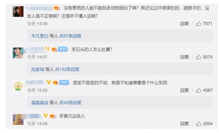 动物园熊猫被砸 网友不满:丢石头的人怎么处置?