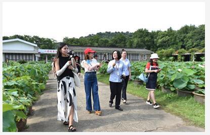 """【看长江之变】还路于民 还湖于民 武汉东湖打造最美城市 """"生态绿心"""""""