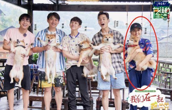 张子枫抱狗姿势被赞:女孩子还是不一样
