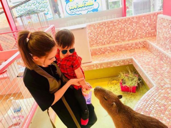 画面太甜!周杰伦一家游日本 辣妈昆凌抱小小周给小水豚喂食