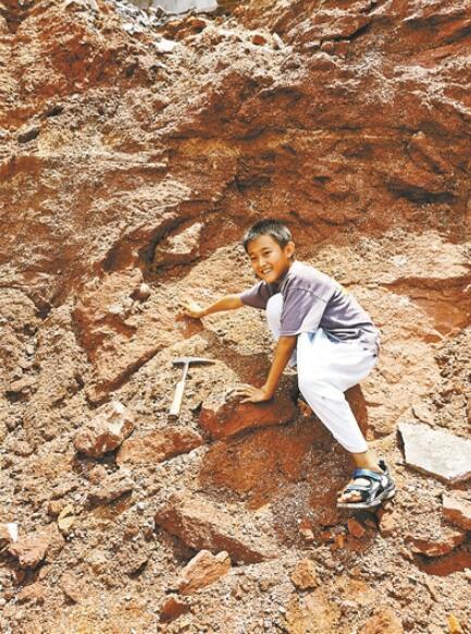9岁小学生发现6600万年前恐龙蛋
