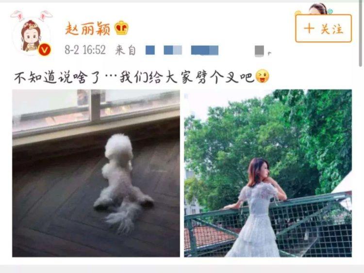 赵丽颖将补办婚礼 这条劲爆消息足以力破冯绍峰出轨传闻