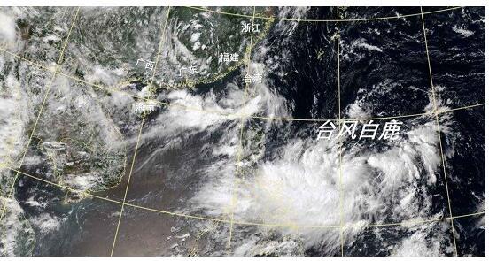 """【台风白鹿路径】第11号台风""""白鹿""""预计将登陆 这些地区做好防范"""