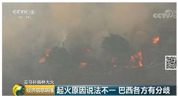 亚马逊雨林火灾什么情况?怎么一回事?详情始末曝光火灾影响严重