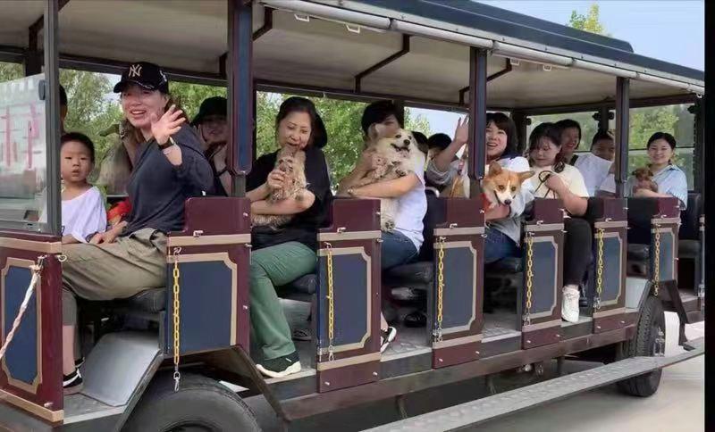 童年,就要和宠物一起撒欢 济南南部山区新添一携宠出游好去处
