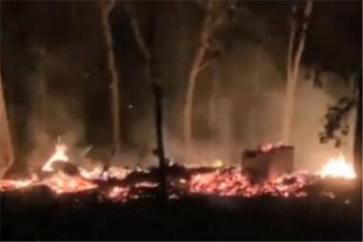 世界最大树屋被烧 12年心血遭大火15分钟就没了