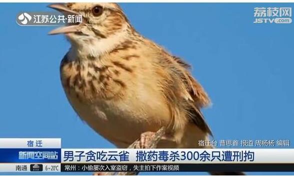 http://www.k2summit.cn/shumashebei/1401867.html