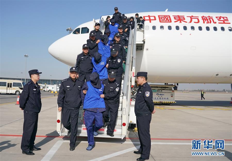 """特大跨境""""杀猪盘""""诈骗案:208名嫌犯押解回国"""