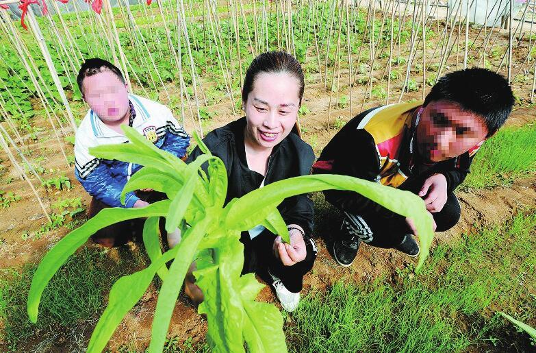 http://www.jinanjianbanzhewan.com/dushujiaoyu/34763.html