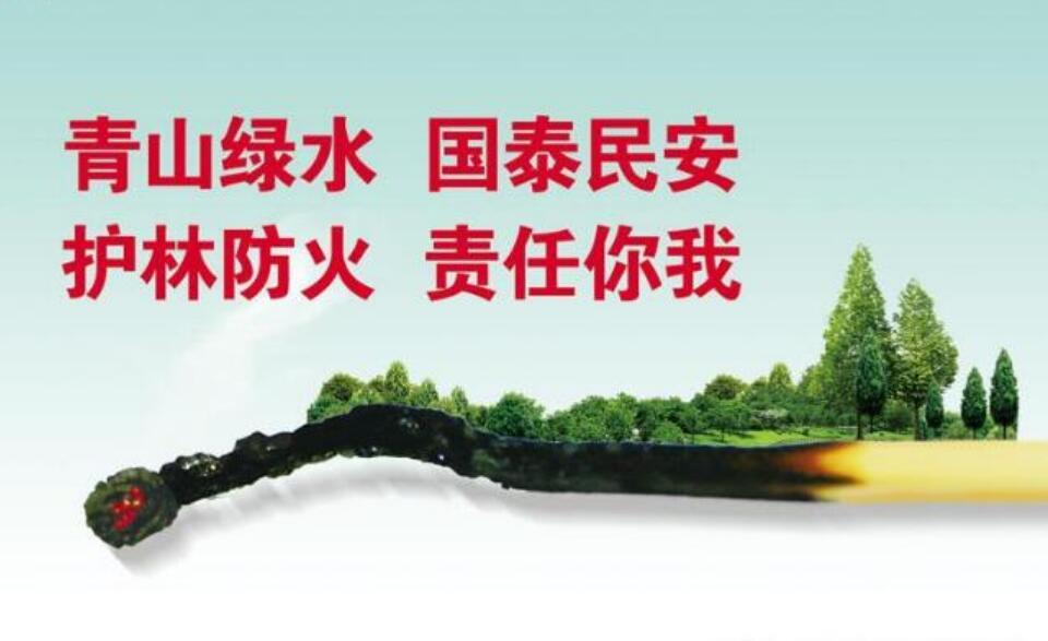 讲文明树新风公益广告:护林防火 责任你我
