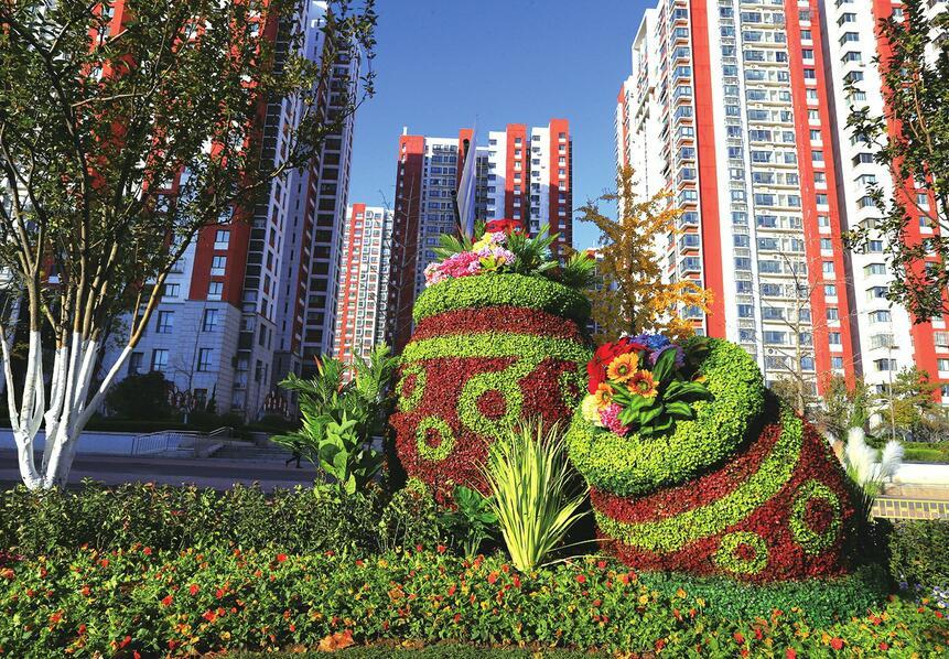【创城再出发 品质再提升】寒冬也飞花 泉城变花城 济南冬季城市景观美化色彩丰富起来