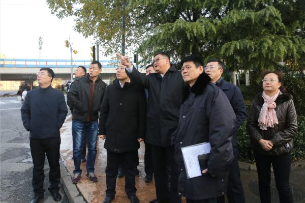 江山同志察看园林绿化、道路养护、环卫保洁等有关工作