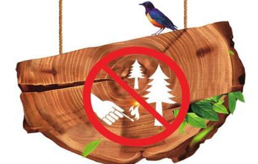 讲文明树新风公益广告:森林防火 人人有责