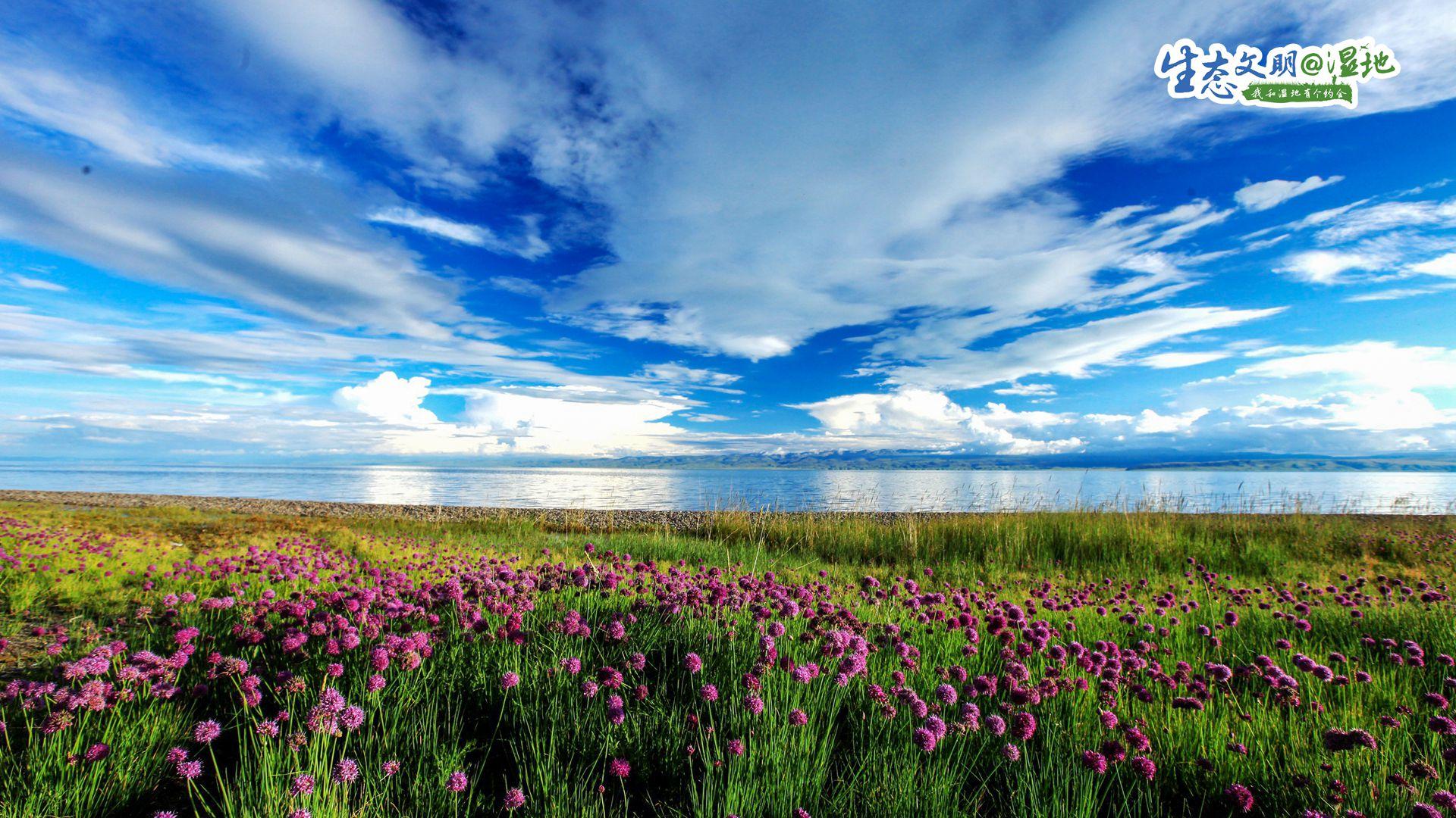 【生态文明@湿地】大美青海 最美湿地