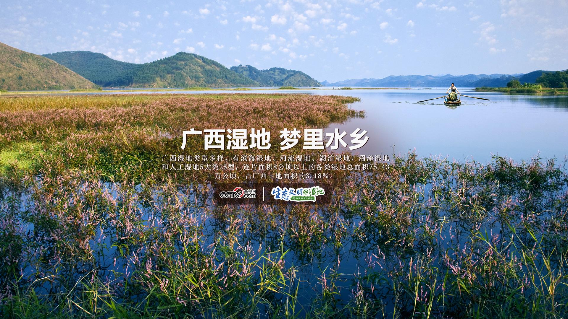【生态文明@湿地】广西湿地,梦里水乡