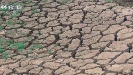 旱情持续!无雨天数已达90天 江西省多地发生不同程度干旱